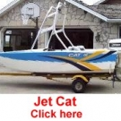 Jet Cat by Steve Johnson